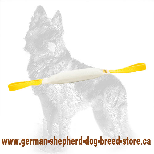 Fire Hose German Shepherd Puppy Bite Tug with Two Handles