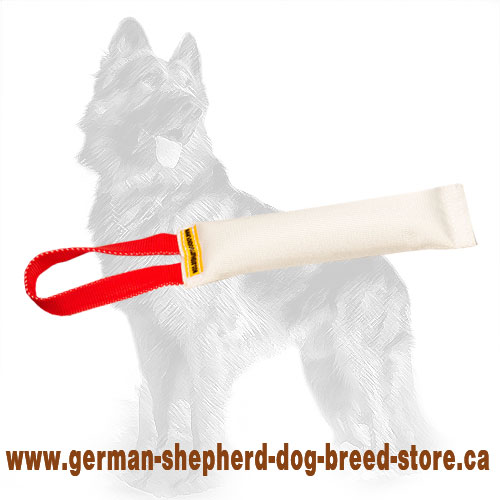 Fire Hose German Shepherd Puppy Bite Tug with Handle