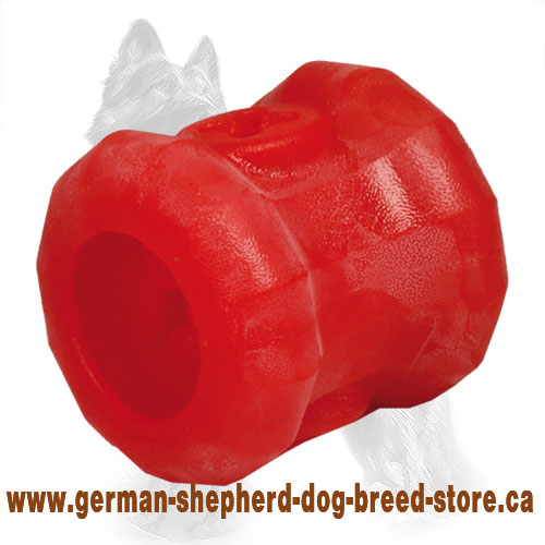 German Shepherd Chewing Toy / Big 'Fire Plug' Treat Holder