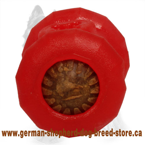 German Shepherd Chewing Toy / Medium 'Fire Plug' Treat Holder