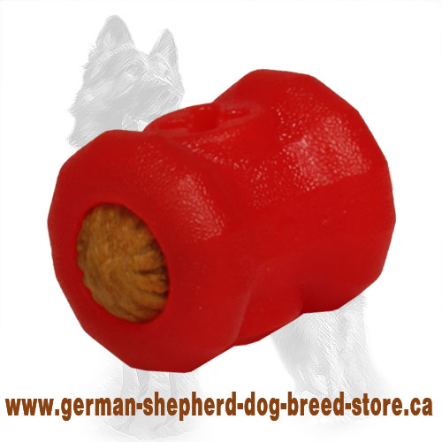 German Shepherd Chewing Toy / Small 'Fire Plug' Treat Holder