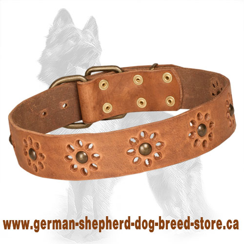 Blooming Leather German Shepherd Collar with Brass Studs