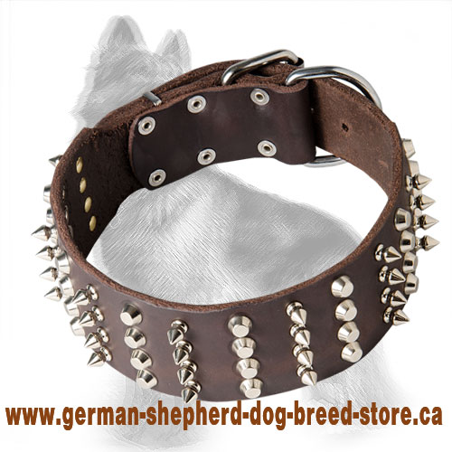 2 inch Wide Leather German Shepherd Collar with Nickel Spikes and Cones