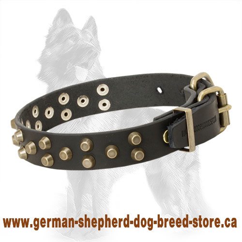 Leather German Shepherd Collar with 3 Rows Brass Pyramids