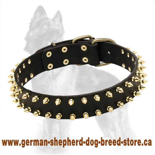 Leather German Shepherd Collar with Shining Brass Spikes