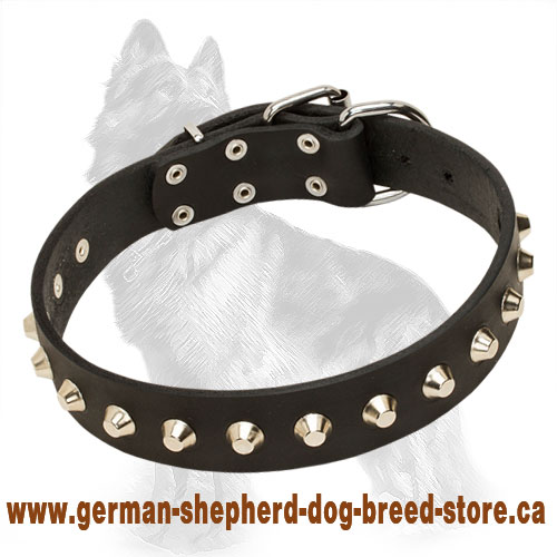 Studded Leather German Shepherd Collar with Nickel Plated Pyramids