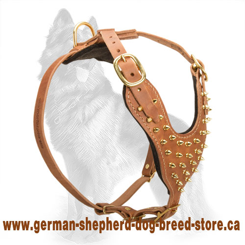 Y-Shape Leather German Shepherd Harness with Brass Spikes