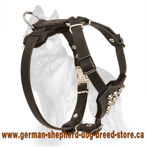 Puppy Leather German Shepherd Harness Decorated with Pyramids