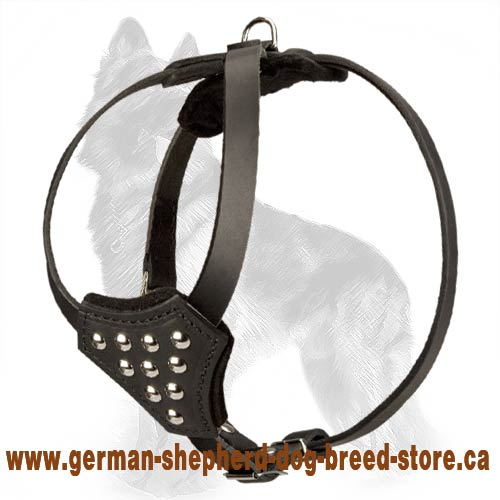 Studded Leather German Shepherd Harness for Puppies