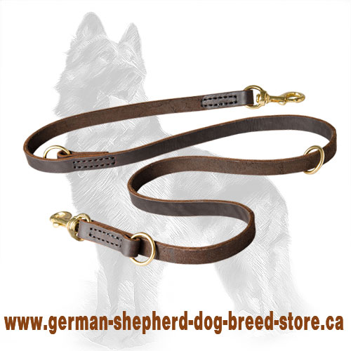 Leather Police Agitation Lead for German Shepherd Training
