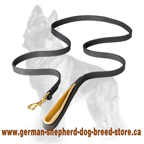 Leather Dog Leash With Support Material On The Handle - 6' LEASH
