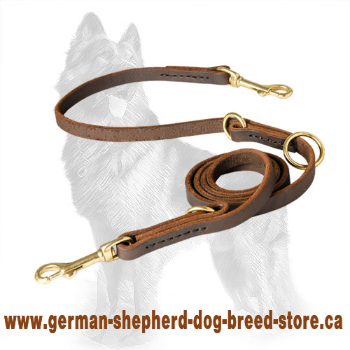 German Shepherd Leather Dog Leash
