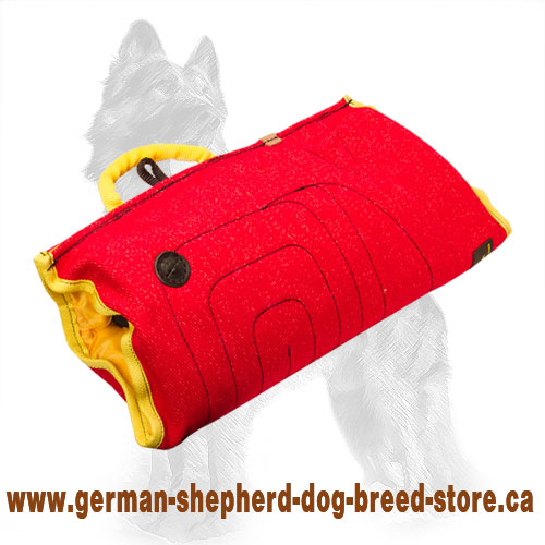 Puppy sleeve made of strong yet safe for your dog french linen