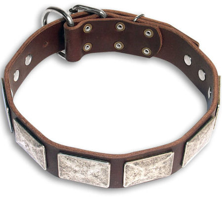GSD Personalized  Brown dog collar 19 inch/19'' collar-c83