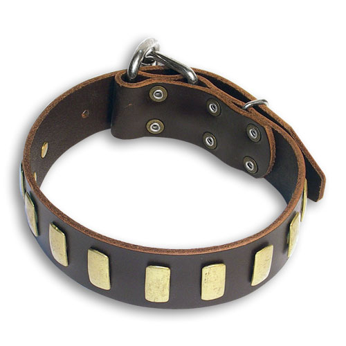 Handmade GSD Shepherd Brown dog collar 18 inch/18'' collar-S33p