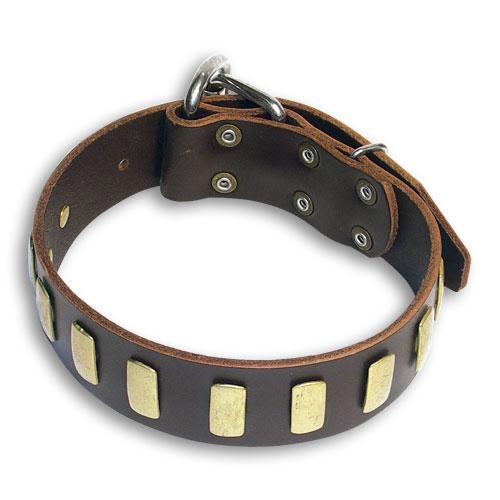 Custom Leather Brown collar 25'' for Alsatian Dog /25 inch dog collar-S33p
