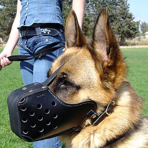 Military Leather Dog Muzzle for German Shepherd Dog