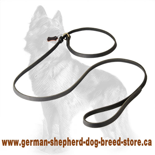 Leather Combo German-Shepherd Leash with Choke Collar