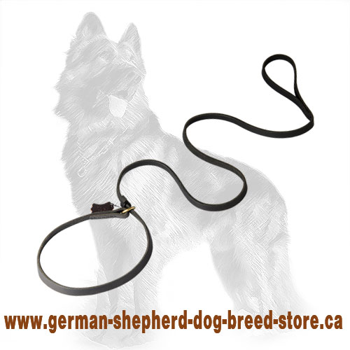 Leather German-Shepherd Leash/Collar Combo