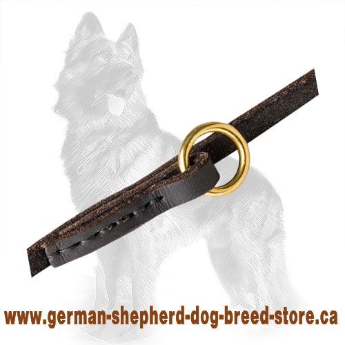 Multifunctional German Shepherd Leash with Stitched Brass Ring