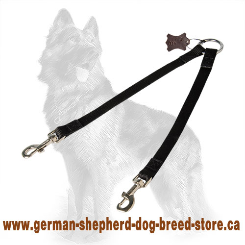 Walk Length For Each Breed Of Dog