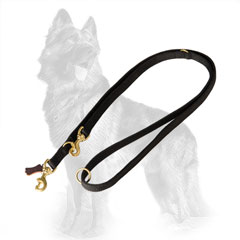 German-Shepherd Nylon Dog Leash Equipped with Two Snap Hooks