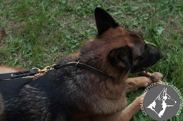 German-Shepherd leather leash of braided design with brass plated hardware for perfect control