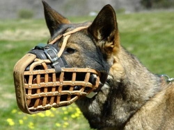 Leather Basket Dog Muzzle for German Shepherd