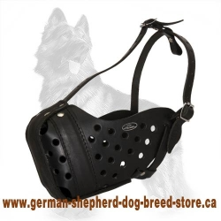 Leather German Shepherd Muzzle for Walking and Training