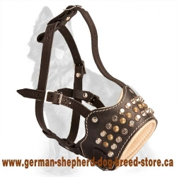 Padded And Studded Muzzle for German Shepherd
