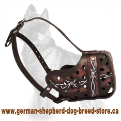 Artistic Painted Leather Muzzle for German Shepherd