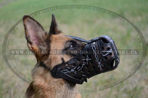 German Shepherd Dog Muzzle Painted with Barbed Wire