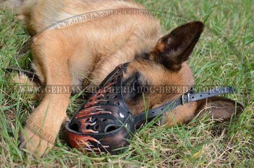 German Shepherd Dog Muzzle Painted Leather with Fire