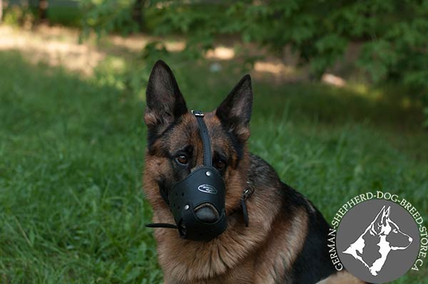 German Shepherd Muzzle with Open Nose for Free Air Flow