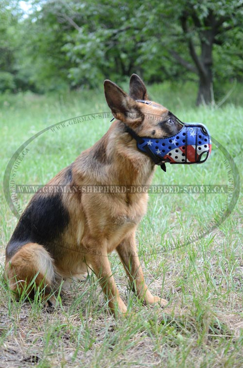 American Pride Painted German Shepherd Muzzle