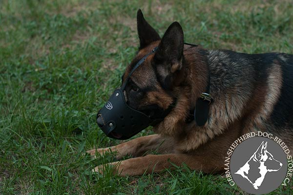German Shepherd leather muzzle well ventilated nickel plated hardware for basic training