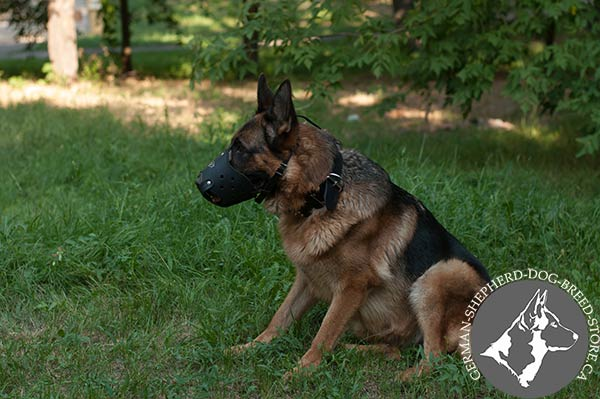Strong German Shepherd Muzzle for Perfect Daily Walking