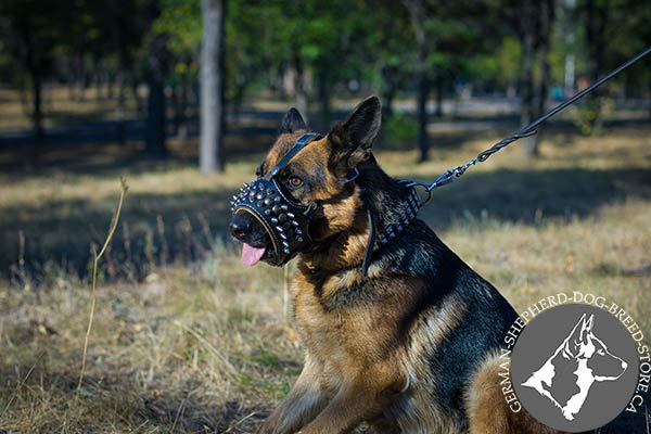 Spiked Leather German Shepherd Muzzle in Royal Design