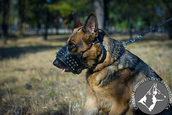 Nappa Padded Leather Dog Muzzle with Adjustable Straps