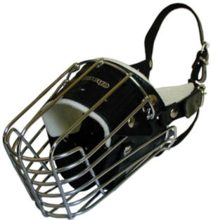 German Shepherd wire basker dog muzzle
